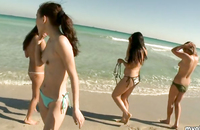 Hotties are having major fun on the beach